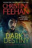 Dark Destiny (The Dark Book 13)