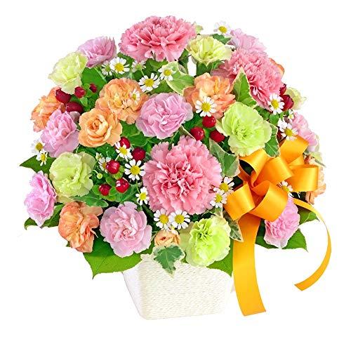 【母の日ギフト】カーネーションのミックスアレンジメント mt01az-613259 花キューピット お祝い 誕生日 記...