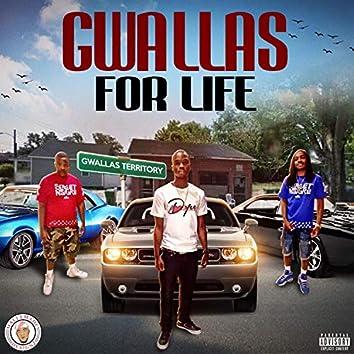 Gwallas for Life