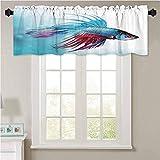 YUAZHOQI cortinas cenefas para acuario siamés lucha Betta peces natación en acuario A 1 panel de 106,7 x 45,7 cm ventanas para ventanas de cocina