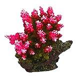AQL Decoración Coral de Resina para Acuario Modelo Acropora 4 cm 8 x 6 x 7 h