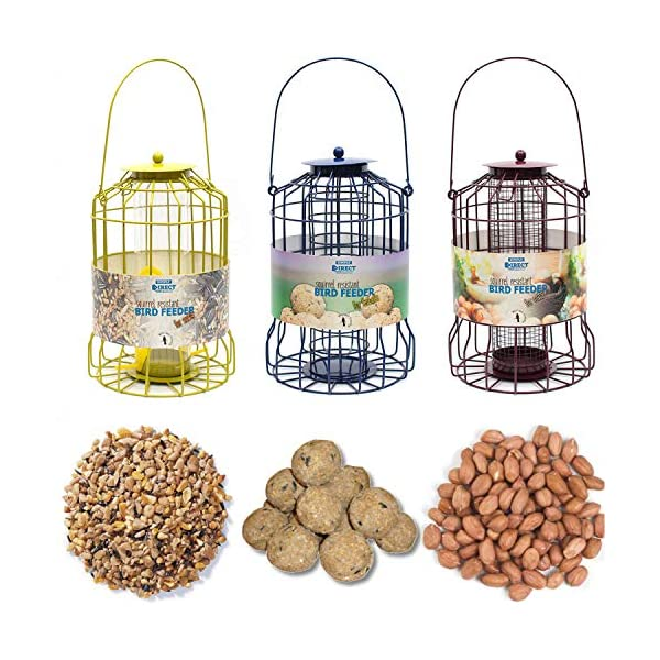 simply direct Set of 3 x Squirrel Resistant Guard Nut, Seed & Fat Ball Bird Feeders With or Without Feed