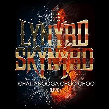 Lynyrd Skynyrd -Chattanooga Choo Choo (Live)