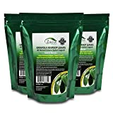 Zokiva Nutritionals - Soursop Leaves Hojas De Guanabana 1 oz x 3 Pack of Graviola Leaves for Tea - A Natural Caffeine - Free Bioavailable Superfood Rich in Powerful Antioxidants - in Zip Pouch