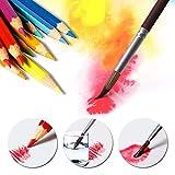 24/36/48 Matite colorate ad acquerello con pennello gratuito Matite colorate assortite for disegni da colorare for bambini e adulti matite colorate (Color : 36 colors)