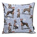 Fundas de cojín, diseño de Navidad mexicana sin pelo Xoloitzcuintle Xolo perro decorativa funda de cojín para habitación, dormitorio, habitación, sofá, silla de coche, 20 x 20 pulgadas