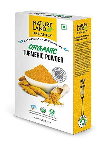 Natureland Organics Turmeric Powder / Haldi 100 Gm