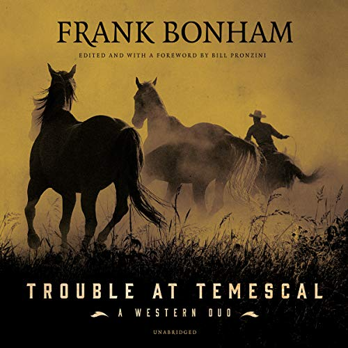 Trouble at Temescal audiobook cover art