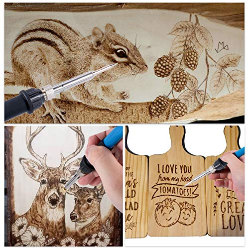 KLARYTYMA Wood Burning Kit, DIY Wood Burning Tools with On-Off Switch Temperature Controlled Professional Pyrography Wood Burning Pen and Various Wooden Kits Carving/Embossing/Soldering Tips