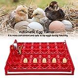 Naroote 【𝐏𝐫𝐢𝐦𝐚𝒗𝐞𝐫𝐚 𝐕𝐞𝐧𝐝𝐢𝐭𝐚】 Incubatrice per Uova in plastica Rossa da 220 V, incubatrice per Uova, Strisce per Uova per incubatrice per Uova di Uccelli(220V Motor)
