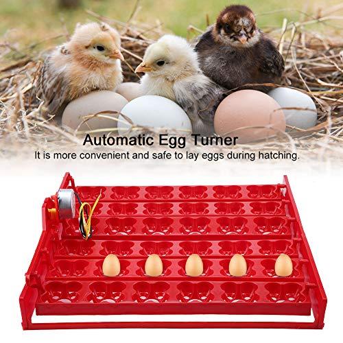 Nacedora de huevos de 43 * 41,7 * 5,2 cm para patos(110V motor)