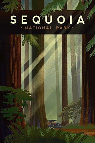 Sequoia National Park, California – Redwood Forest – Lithographie géométrique Antique 9 x 12 Art Print multicolore
