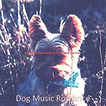Energetic Background Music for Reducing Dog Stress