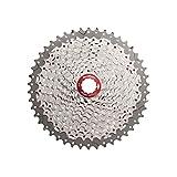 SunRace MX8 - Cassette de piñones para bicicleta de...