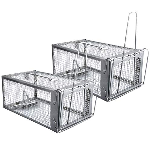 Gingbau Live Traps for Chipmunks Rats and Mice (Set of 2)
