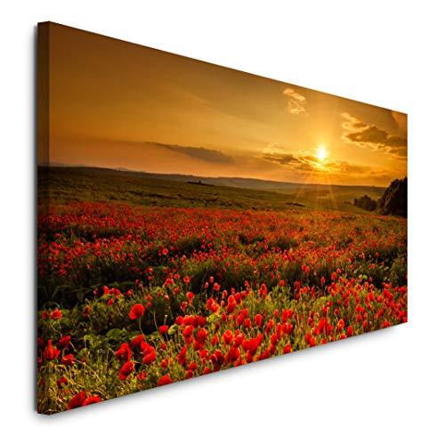 Paul Sinus Art GmbH Mohnfelder 120x 50cm Panorama Leinwand Bild XXL Format Wandbilder Wohnzimmer Wohnung Deko Kunstdrucke