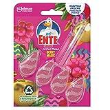 WC-Ente Active Clean WC Duftspüler-Einhänger, WC Reiniger, Berry Magic, Limited Edition, 1er Pack (1 x 38.6 ml)