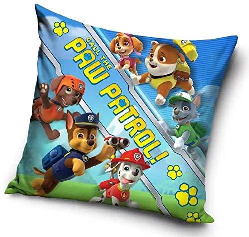 Paw Patrol – Cojín Skye – Decoración infantil Cushion Chase – Rubble – Rocky – Marshall – Zuma – 40 x 40 cm