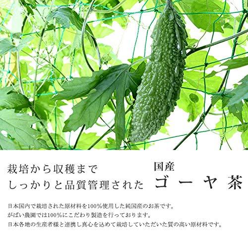がばい農園『国産ゴーヤ茶』