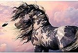 Kits de pintura rápida por números para adultos y niños Pintura al óleo de bricolaje Lienzo digital Arte de la pared Decoración del hogar - Caballo en el viento animal