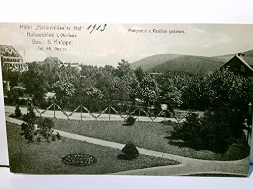 Hahnenklee. Hotel Hahnenklee´er Hof. Bes. H. Knüppel. Alte Ansichtskarte / Postkarte s/w, ungel. datiert 1913. Gebäudeansicht, Parkpartie v. Pavillon gesehen, Goslar