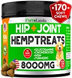 Best Dog Joint Supplements - Organic Hemp Hip & Joint Supplement for Dogs Review