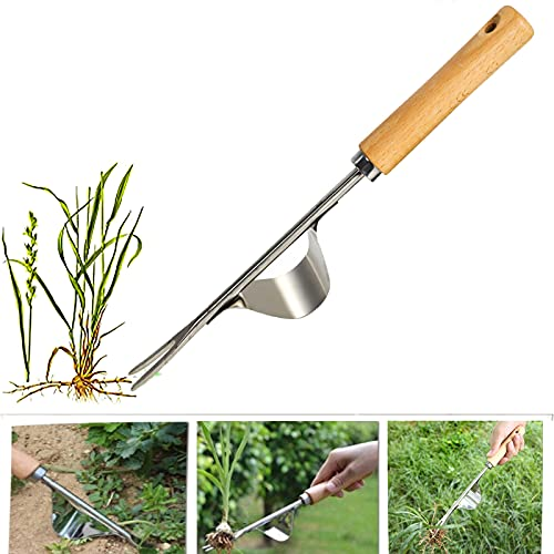 BERNIE ANSEL Garden Weeder Hand Tool,Ergonomic Weeding Tools,Stainless Steel Base - Easy Weed Removal and Deeper Digging for Planting and Weeding V
