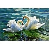 Pintura por números,Lake lovers swans Pintura por Números para Adultos Bricolaje Lienzo Preimpreso Pintura al óleo Arte Decoración del Hogar Reducir la Ansiedad,40cmX50cm(sin marco).