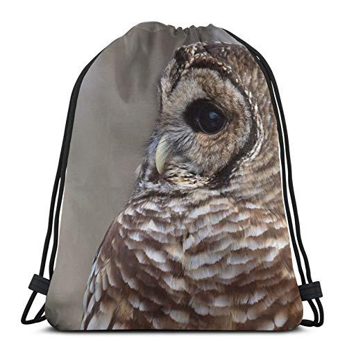 Affordable shop Barred Owl Strix Varia Drawstring Backpack Bag Lightweight Gym Travel Yoga Casual Snackpack Shoulder bag for Hiking Swimming beach