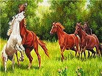 油絵 数字キットによる絵画走る馬デジタル絵画油絵 数字キットによる絵画手塗り DIY絵 デジタル油絵塗り絵 40x50cm (フレームレス)