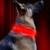 Vizbrite Led Dog Collar, USB Rechargeable Dog Paw Pattern Pet Collar, Red Glowing Collar for Night Activity, Flashing Collar for Large Dogs (Red/Red Light)