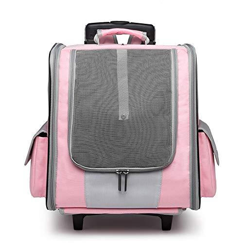DZTIZI Mochila Perro Gato Pequeños Resistente Backpack Plegable Transportín Portatil para Viaje Trekking Moto Avión Entrenar,Pink