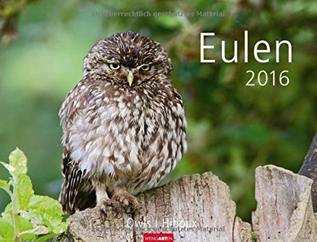 お風呂高音区Eulen 2016