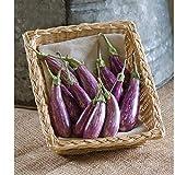 David's Garden Seeds Eggplant Fairy Tale 3852 (Purple) 25 Non-GMO, Hybrid Seeds