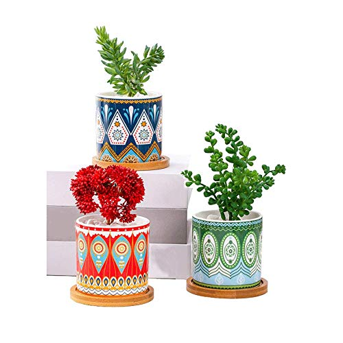 多肉植物鉢 植木鉢 おしゃれ 陶器鉢 観葉植物 鉢 多肉 鉢 サボテン鉢 北欧風の装飾 美しい生活は家から始まります事務室 ベランダ 客間の最優秀装飾 竹製トレイ付き 3点セットBOM--21030701