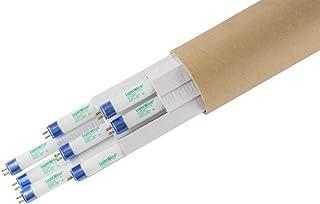 Lightingwise 2 FT 6500K T5 HO Fluorescent Grow Light Bulbs - Pack of 1,4,8,20,40 (8, 6500k - Blue - Veg)