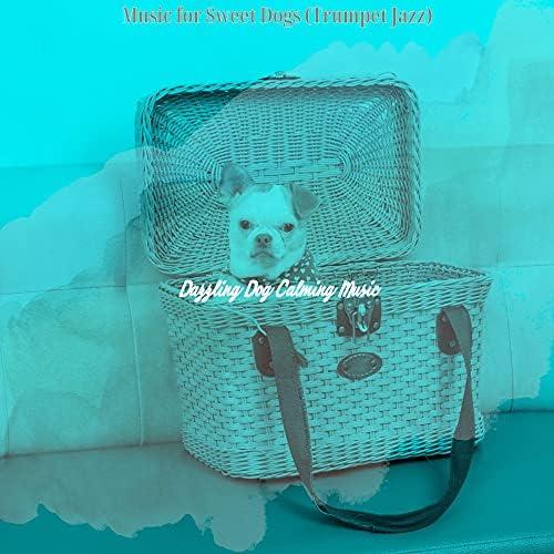 Dazzling Dog Calming Music