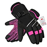 Waterproof & Windproof Winter Gloves for Men and...