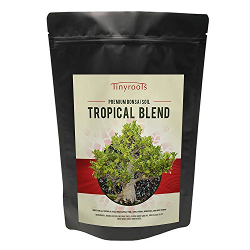 Tropical Bonsai Tree Soil Blend - from Tinyroots - 100% Organic - Fast Draining Pre -Mixed Succulent Potting Soil Mix - Perfect for Healthy Bonsai Growth (2 Quarts)