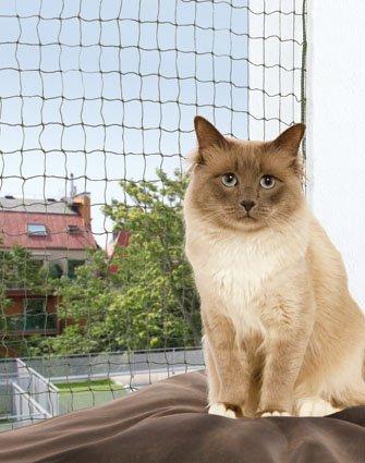 FamilyZoo | Katzennetz | Schutznetz | 3 x 2m | drahtverstärkt | Nylon |olivgrün