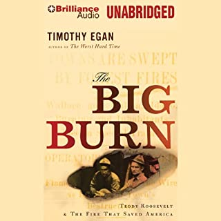 The Big Burn cover art