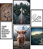 Papierschmiede® Premium Poster Set Wildnis | 6 Bilder als