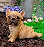 Ebros Realistic Lifelike French Bulldog Puppy with His Belly On The Ground Figurine 6.5
