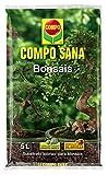 Compo sana bonsáis con 8 semanas de abono, de interior y exterior, substrato de cultivo, 5 l, 37x23x5. 5 cm