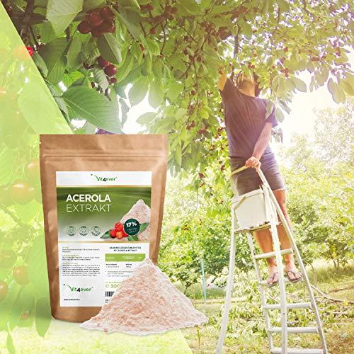 Vit4ever Acerola Pulver - 300 g - Natürliches Vitamin C - 200 Tagesportionen mit 1500 mg Extrakt aus der Acerolakirsche (6,6 Monate Vorrat) - Laborgeprüfte Reinheit & Qualität - Vegan