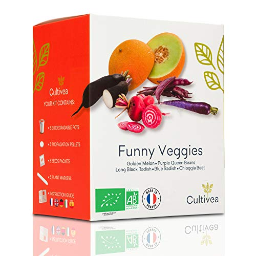 Cultivea Funny Veggies – Bio Gemüse Anzuchtset -100% Öko Samen – Indoor Garten – Das perfekte Geschenk (Goldene Melone, Purple Queen Beans, Blauer und Schwarzer -Rettich, Chioggia Bete) – DIY –
