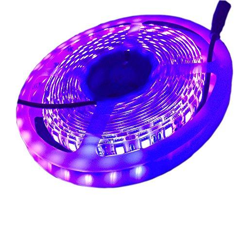 5M 5050SMD 300LED UV LED Luce Impermeabile ultravioletta UV LED striscia pesca notturna luce DC12V (quasi viola)