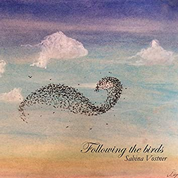 Following the Birds