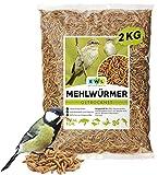 EWL Naturprodukte Gusanos de harina deshidratados, 2 kg, equivalen a 13 l Snack para pájaros, peces, tortugas, roedores y reptiles.
