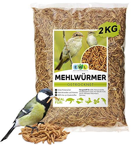 EWL Naturprodukte Mehlwürmer getrocknet 2kg entspricht 13ltr. Insektensnack für Vögel, Fische, Schildkröten, Nager und Reptilien